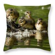 Wood Duck Babies Throw Pillow