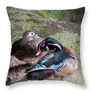 Wood Duck Couples Throw Pillow