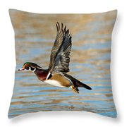 Wood Duck Drake Throw Pillow