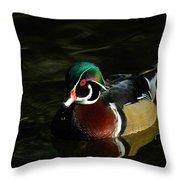 Wood Duck Drip Throw Pillow
