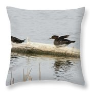 Wood Duck Females On A Log  Throw Pillow