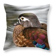 Wood Duck Hen Throw Pillow