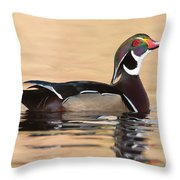 Wood Duck I Throw Pillow