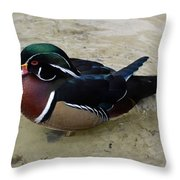 Wood Duck In The Water Throw Pillow