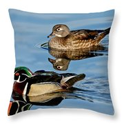 Wood Duck Pair Swimming Throw Pillow