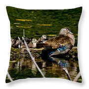 Wood Duck Rest Time Throw Pillow
