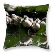 Wood Ducklings On A Log Throw Pillow
