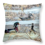 Wood Ducks In The Mist Throw Pillow