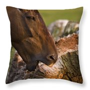 Wood Eater Throw Pillow