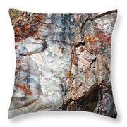 Wood From Another Era Throw Pillow