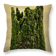 Wood In The Bay Throw Pillow