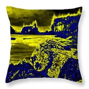 Wood Nymph In The Glow Of The Sunset Throw Pillow