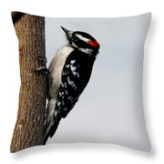 Wood Pecker Throw Pillow