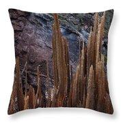 Wood Shreds Throw Pillow
