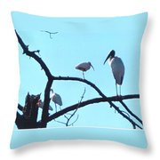 Wood Stork And Ibis Throw Pillow