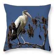 Wood Stork Throw Pillow