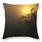 Wood Stork Evergladed National Park Throw Pillow