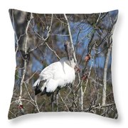 Wood Stork In A Tree Throw Pillow