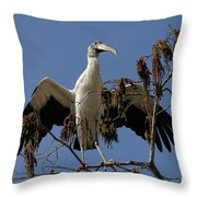 Wood Stork Preparing To Fly Throw Pillow