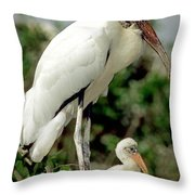 Wood Stork With Nestling Throw Pillow
