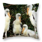 Wood Stork Young In Nest Throw Pillow
