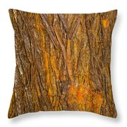 Wood Texture 3 Throw Pillow