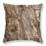 Wood Textures 4 Throw Pillow
