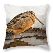 Woodcock In Winter Throw Pillow