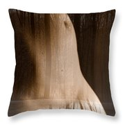 Wooded Belly Throw Pillow
