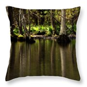 Wooded Reflection Throw Pillow