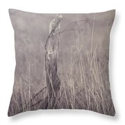 Wooden Fence Post On A Foggy Winter Day Throw Pillow