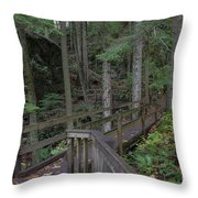 Wooden Forest Trail  Throw Pillow