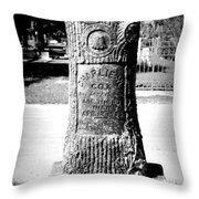 Wooden Grave Throw Pillow