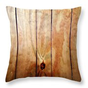 Wooden Panel Throw Pillow by Les Cunliffe