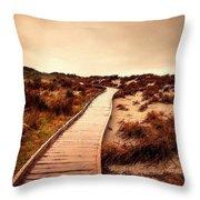 Wooden Steps Throw Pillow