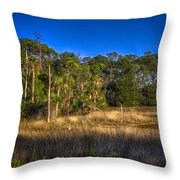 Woodland And Marsh Throw Pillow by Marvin Spates
