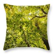 Woodland Background 02 Throw Pillow