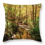 Woodland Brook  Throw Pillow