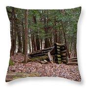 Woodland Cabin Ruins Throw Pillow