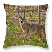 Woodland Coyote Throw Pillow