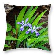Woodland Dwarf Iris Wildflowers Throw Pillow