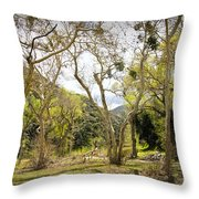 Woodland Glen In The California Vallecito Mountains Throw Pillow