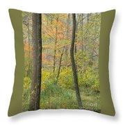 Woodland Interior Throw Pillow