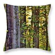 Woodland Morning Throw Pillow