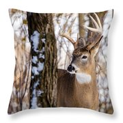Woodland Outlaw Throw Pillow by Steven Santamour