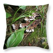 Woodland Secret Garden Throw Pillow
