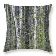 Woodland Spring Throw Pillow