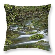 Woodland Stream - Monk's Dale Throw Pillow