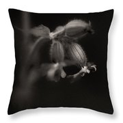 Woodland - Study 9 Throw Pillow