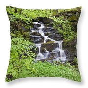 Woodland Waterfall Throw Pillow